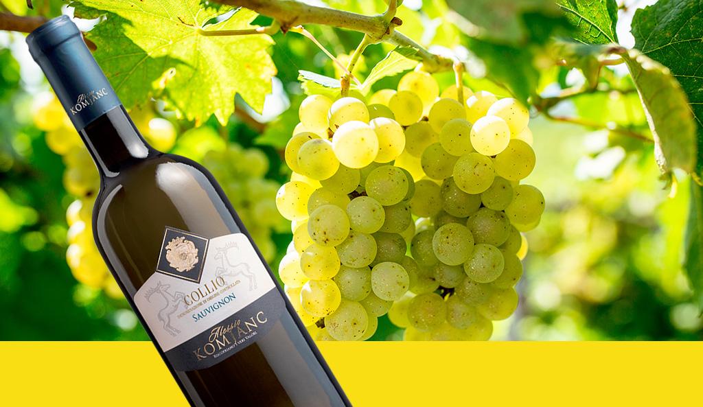 Carlo Macchi con la degustazione dedicata ai vini friulani premia i nostri vini